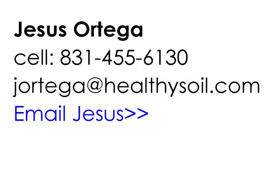 Email Jesus!